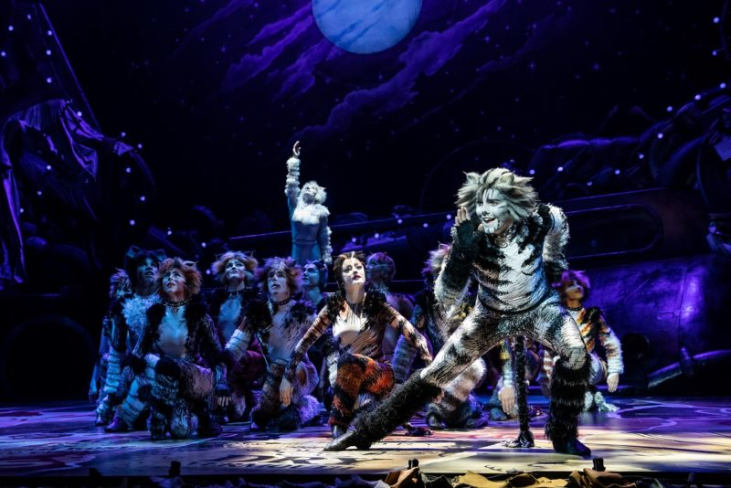 Dan Hoy as 'Munkustrap' and the North American Tour of CATS. Photo by Matthew Murphy.2019